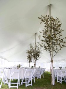 Tent liner pole and rope
